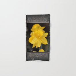Trumpet Daffodil named Exception Hand & Bath Towel