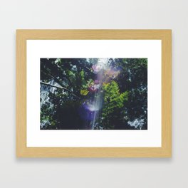 Nature's Filter Framed Art Print