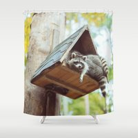 racoon Shower Curtains featuring racoon by Kalbsroulade