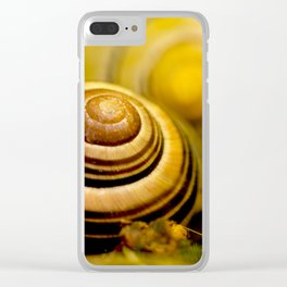 Snail shell close up Clear iPhone Case