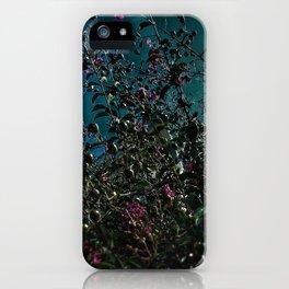 Crape Myrtle I iPhone Case