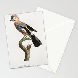 Eurasian Jay from Histoire Naturelle des Oiseaux de Paradis et Des Rolliers (1806) by Jacques Barrab Stationery Cards