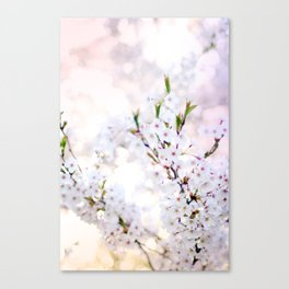 Water-colour Spring #4 Canvas Print