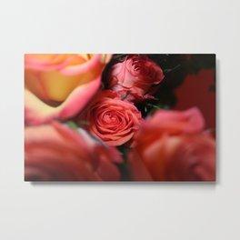 Peeking Rose Metal Print