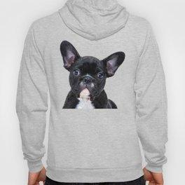 French bulldog portrait Hoody