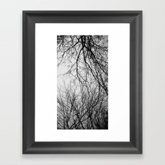 Entwined Framed Art Print