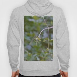 Growth and Transformation Hoody