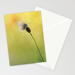I'd like to sit here with you .... Stationery Cards