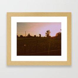 Rice Framed Art Print