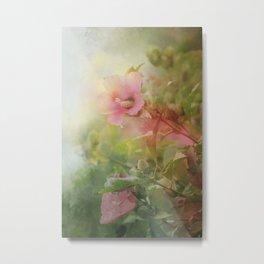 Soft Pink Roses of Sharon Metal Print