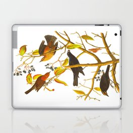 Rusty Grackle Bird Laptop & iPad Skin