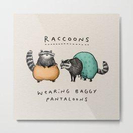 Raccoons Wearing Baggy Pantaloons Metal Print