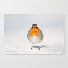 Angry Bird .:. Robin in the Snow Canvas Print