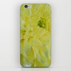 Yellow and Mellow iPhone & iPod Skin