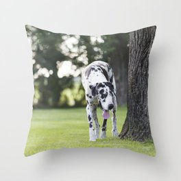 Harlequin Great Dane Next to Old Oak Tree Throw Pillow