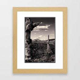 Wild Wild West Framed Art Print
