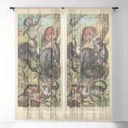 Vintage New World Monkeys Sheer Curtain