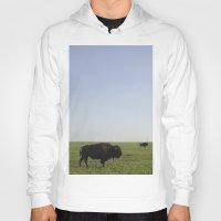 buffalo Hoodies featuring Buffalo by AlanW