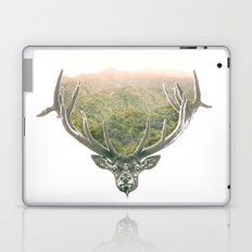 Eye of Providence II Laptop & iPad Skin