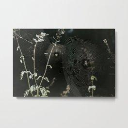 Spiderwebs Metal Print