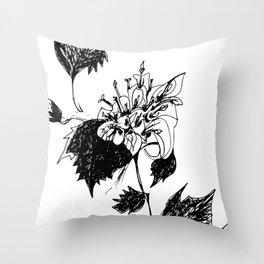 Acourtia nana Throw Pillow