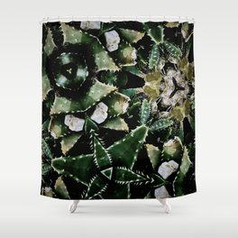 Succulents on Show No 1 Shower Curtain