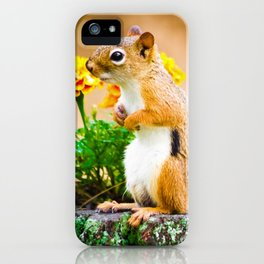 Squirrel Among the Marigolds iPhone Case