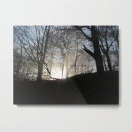 Image eighteen Metal Print