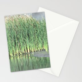 Marshes Stationery Cards