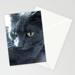 Purrr-fect Stationery Cards