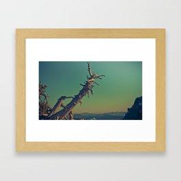 masonry  Framed Art Print