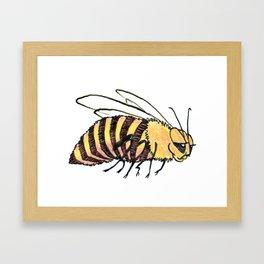 Chubby Bee Framed Art Print