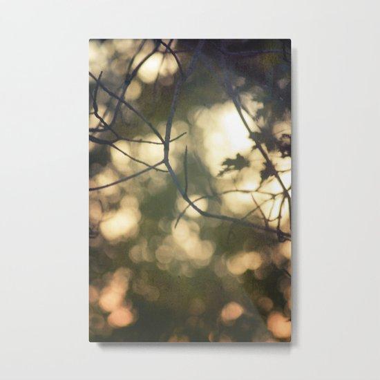light's beauty Metal Print