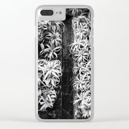 Air Plant Waterfall Clear iPhone Case