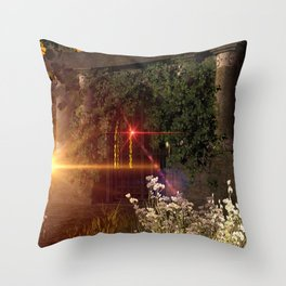 Old crypt Throw Pillow