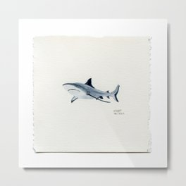A Tiny Reef Shark - Drawing #38 Metal Print