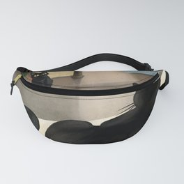 Upper and lower Fanny Pack
