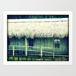 Old witch's house Art Print