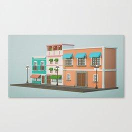 16S B Canvas Print