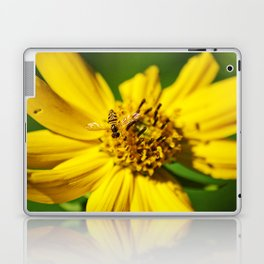 Hovering in the Sun Laptop & iPad Skin