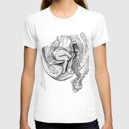 Anatomy Of Sex T-shirt