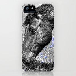 Horse & Bluebonnets iPhone Case