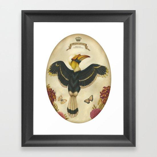 Great Hornbill Framed Art Print