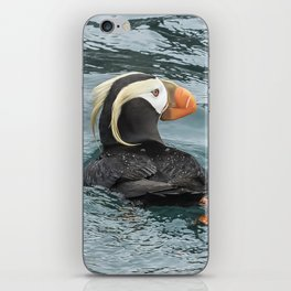 Tufted Puffin iPhone Skin