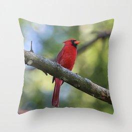 Cardinal Series I Throw Pillow