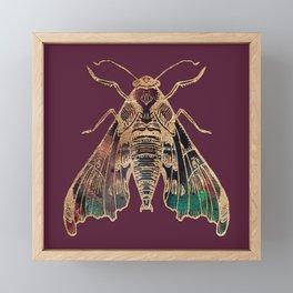 Sphinx Moth Framed Mini Art Print
