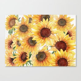Sunflowers Bloom  Canvas Print