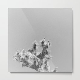 JOSHUA TREE X Metal Print
