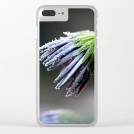 Frosty Petals Clear iPhone Case