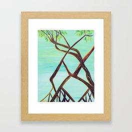 mangroves Framed Art Print